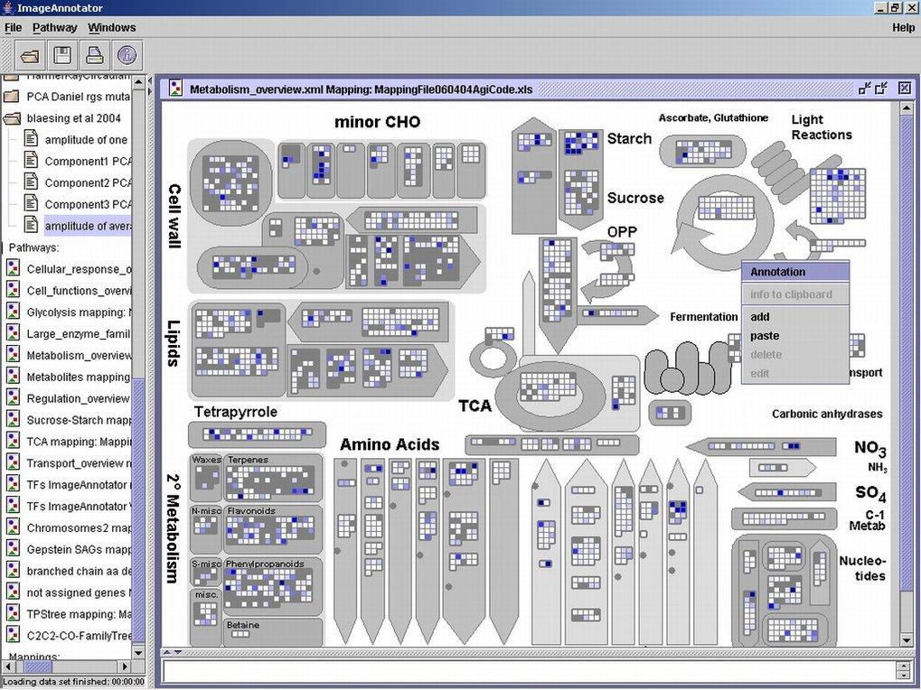 Illustration des Softwaresystems MapMan zur Abbildung großer Datenmengen auf Netzwerke (vergleiche http://gabi.rzpd.de/projects/MapMan/).