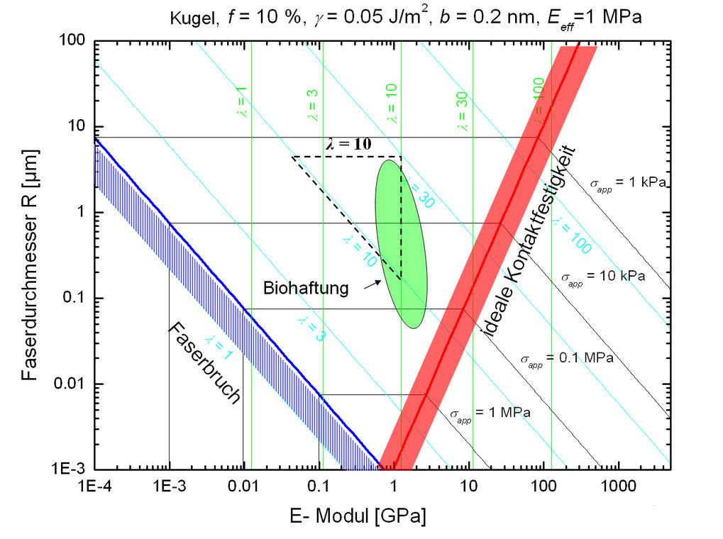 Theoretische Karte der Haftfähigkeit von Faserhaftstrukturen als Funktion der Faserdimension und der Steifigkeit des verwendeten Materials. Kleinere D