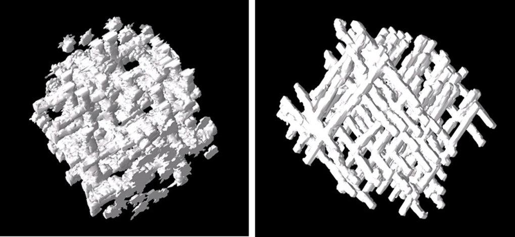 Architektur von trabekulärem Knochen als Resultat von dreidimensionalen Computersimulationen. Die Unterschiede in der Struktur sind von Änderungen im