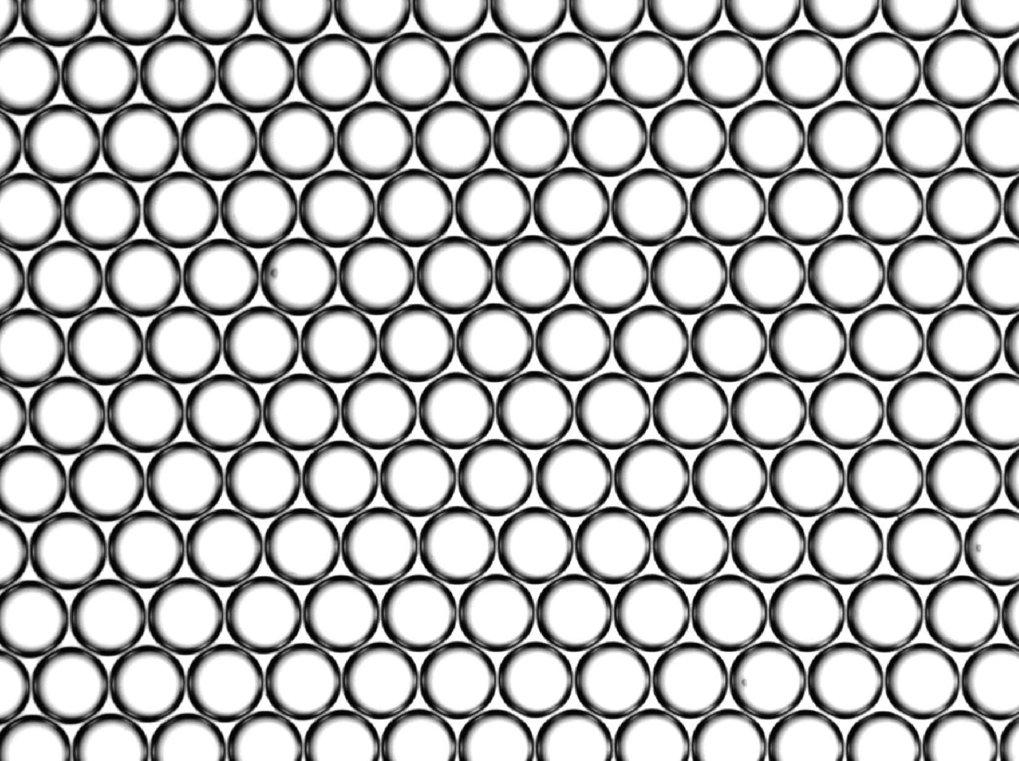 Emulsion außerhalb des Kanals. Der mitlere Tropfendurchmesser beträgt 67 Mikrometer, die Varianz ist kleiner als 1 Mikrometer.