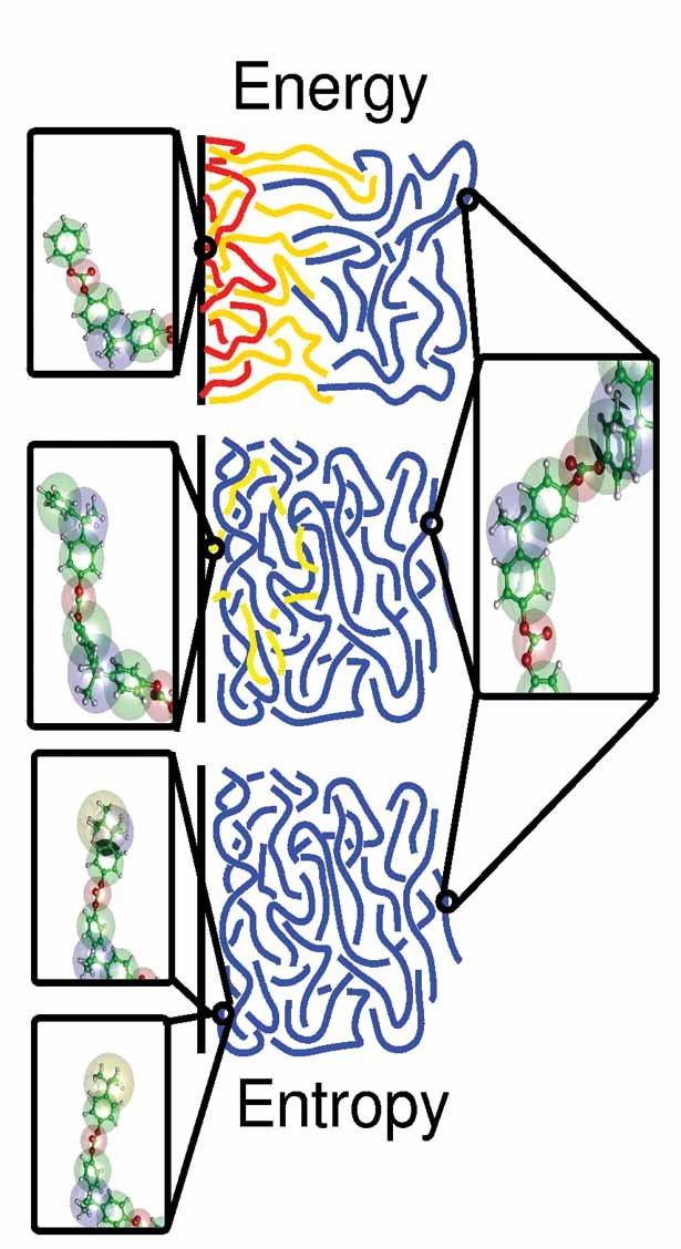 Unterschiedliche Schmelzenmorphologie nahe einer Ni(111)-Oberfläche für die unterschiedlichen Kettenenden. Die Morphologien variieren von Adsorptionse