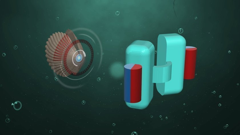 Micro- and nano-swimmers can be propelled through media similar to bodily fluids