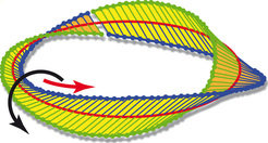 <p>Twisted into a Möbius strip: Strong focussing can generate a Möbius strip from circularly polarised light – light which rotates about the axis of its direction of propagation. </p> <p> </p>