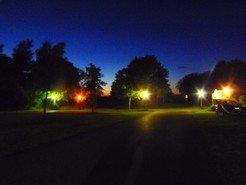 Die Schattenseiten der Straßenbeleuchtung: Nächtliches Kunstlicht verändert das Singverhalten von Vögeln.