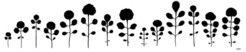 Die Variation der Blattform innerhalb einer Art hängt davon ab, wie schnell sich die Pflanze entwickelt