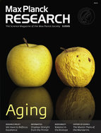 Virtually all organisms and living beings have to submit themselves to the natural aging process. But how does this process work? The Max Planck researchers whose work we report investigate fish or a freshwater polyp which have almost attained immortality. And they grapple with the social consequences of age in humans - when it comes to retirement after an active working life.