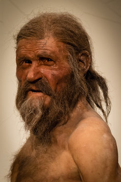 <p>No laughing matter: while iceman Oetzi looks very happy in this reconstruction, he was probably plagued by stomach problems in real life, as a genome analysis of his stomach bacteria has shown.  </p> <p> </p>
