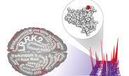International consortium identifies and validates cellular role of priority Parkinson's disease drug target, LRRK2 kinase.