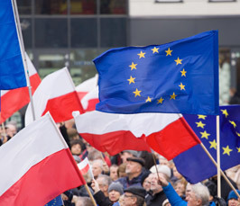 How to Protect European Values – Assessing European Responses to Recent Reforms in Poland